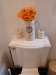 Is it weird to post pictures of your toilet on the internet?