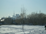 TO skyline from the park!